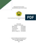 (WORD) KELOMPOK 1-SOSIALISASI DIVERSIFIKASI PANGAN-THP A 2012
