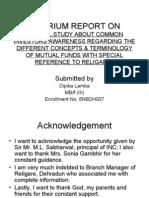 Interium Report On