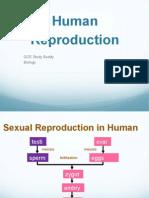 Human-reproduction.pdf