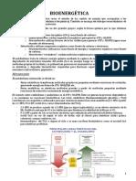 1.- Bioenergética.pdf