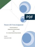 Finance 201 Term Assignment