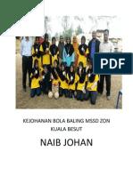 Kejohanan Bola Baling Mssd Zon Kuala Besut