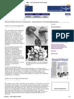NIDA - Serie de Reportes de Investigación - Alucinógenos y Drogas Disociativas