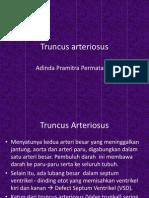 Truncus Arteriosus Dinda