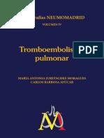 Monog Neumomadrid IV