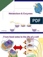 AP Bio Enzymes Ppt