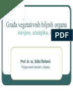 Gradja Vegetativnih Biljnih Organa