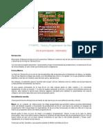 11666391 Manual de Macros Excel