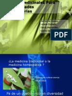 Plantas Medicinales Para Enfermedades Respiratorias