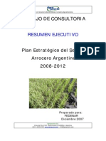 Resumen_Ejecutivo28-12-2007
