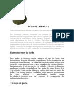 tesis primer paso.doc