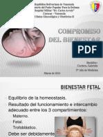Compromiso Del Bienestar Fetal