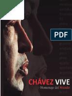Chavez vive   homenaje del mundo