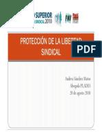 Proteccion Libertad Sindical 20Ago