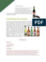 Proceso de Fermentacion Del Vino