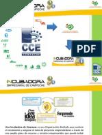 Modelos de incubación de empresas en México