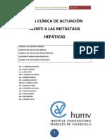 Guia Metastasis Hepaticas 2012 Valdecilla