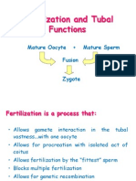 Fertilization and Tubal Functions