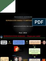 DIAPO PUBLI.pdf