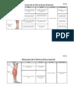Musculos de la Pierna.pdf
