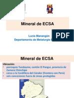 ECSA IQ