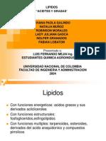 exposicion quimicaagroindustrial lipidos