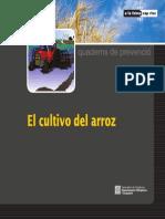 QP El Cultivo Del Arros CAST