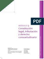 Constitucion Legal