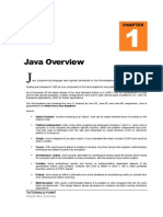 Chapter 1 Java Overview LEARNING JAVA