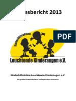 Jahresbericht 2013 Opt