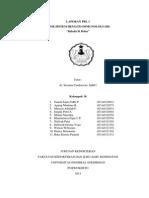 Laporan PBL 1 HI Fixed