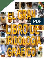 Iridología Gráfica