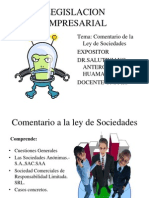 10. Ley de Sociedades 2013