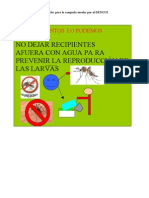 Cartel Del Dengue