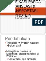 7 - Modifikasi Pasca Translasi & Transport - SUB