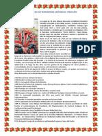 NATALICIO DE MONSEÑOR LEÓNIDAS  PROAÑO.docx