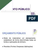 Orcamento Publico (2)