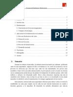 Informe Biolixiviacion