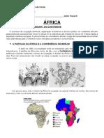 901 Apostila Africa Dependencia