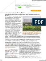Enfoques_ Agricultura Urbana
