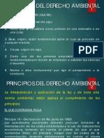 2013_02_Principios del Derecho Ambiental.pdf