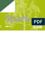 Manual Spark 2013