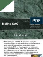 Molino Sag