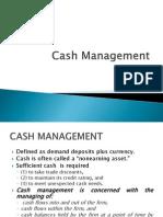 4. Cash Management 2013 (1)