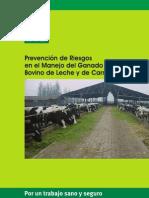 PREVENCIÓN EN MANEO DE GANADO