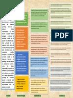 Mapa funcional de la carrera de Asistente Técnico en Primera Infancia