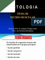 Tecido Muscular e Nervoso