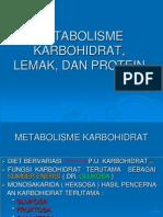 11. METABOLISME Karbohidrat Lemak Protein