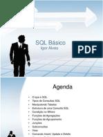 treinamentodesqlbsicoigoralves-13046863112845-phpapp01-110506075413-phpapp01