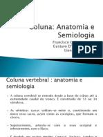 Coluna+Vertebral+Trab+Orto
